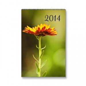 2014 Calendars from Add More Color