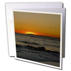 Add More Color Greeting Cards with Blank Insides for All Occasions