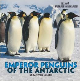 Great Books For Kids About Emperor Penguins